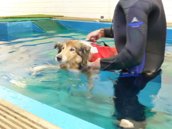 One of our Hydrotherapy patients